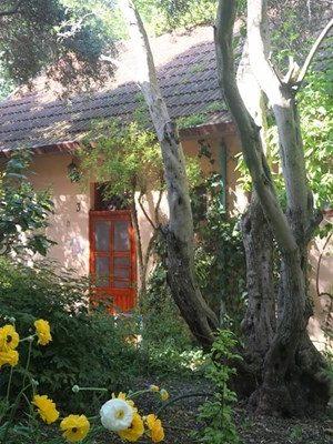 כפר ציפורי